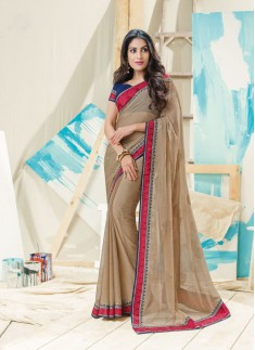 Beautiful Saree With Elegant Border And Contrast Blouse
